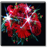 Party Lights Bouquets