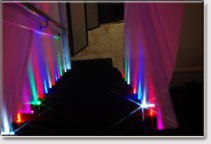 Party Lights Walkway